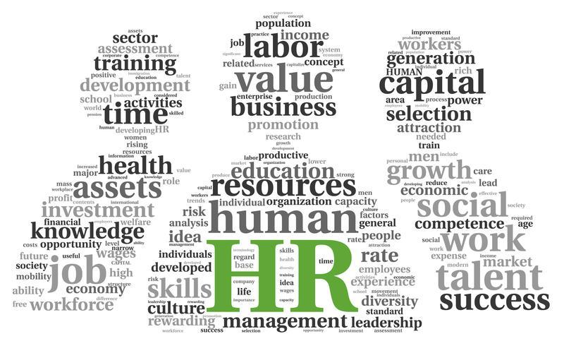 the role of hr specialists within the organisation essay