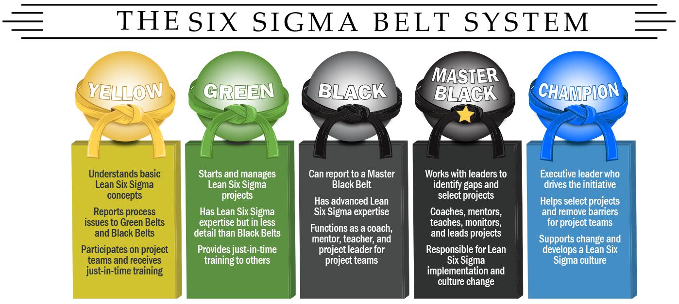 Six Sigma Belt System