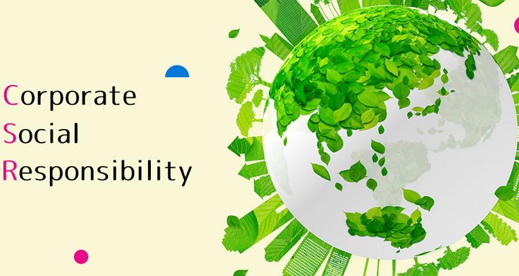 CSR Vskills