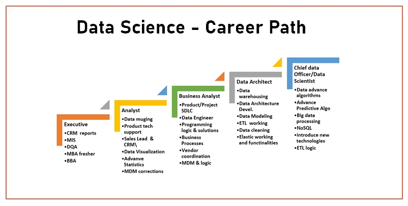 What is the career path for Data Scientist?