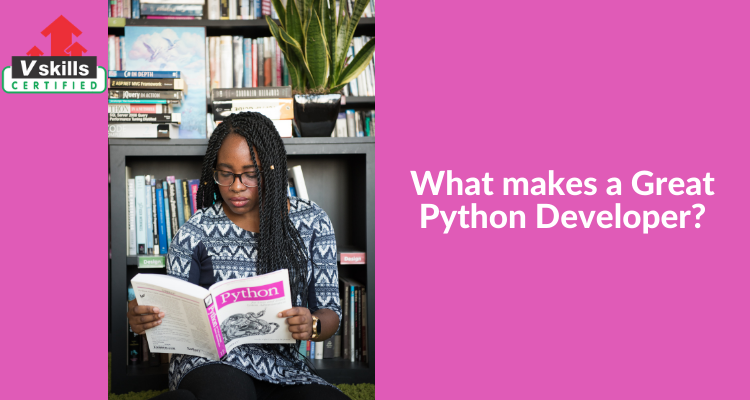What makes a Great Python Developer?