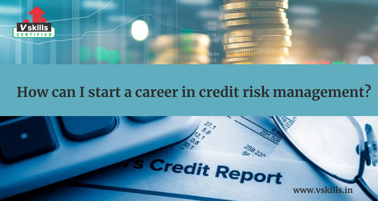 How can I start a career in credit risk management