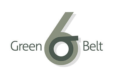 Certified Six Sigma Green Belt Professional