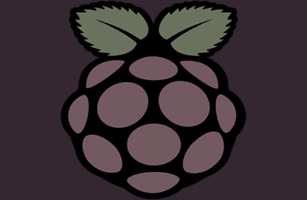 Certified Raspberry Pi Professional