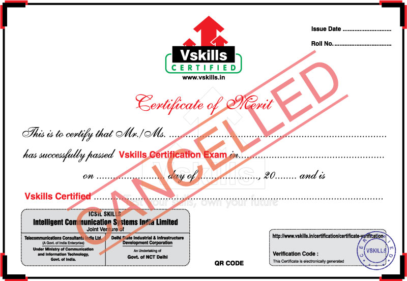 vskills sample certificate