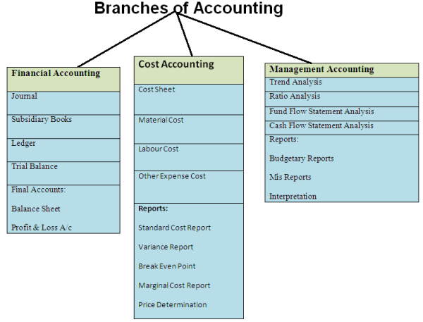 different fields of accounting Most accountants and auditors need at least a bachelor's degree in accounting or a related field certification, including the certified public accountant (cpa) credential, can improve job prospects.