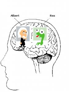 Albert & Rex