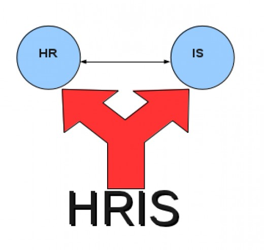 HRIS a bone to organization!!! - Vskills Blog