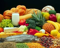 Importance of Food in our daily lives
